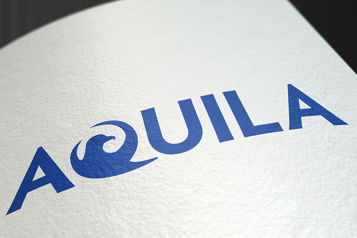 Logo design for Aquila Partnership