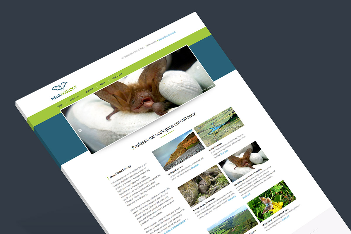 WordPress website design and build for Helix Ecology